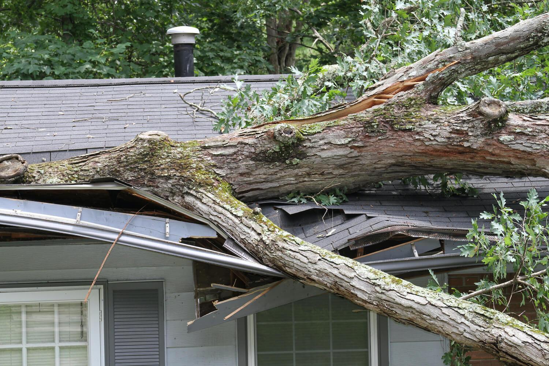 Immobilienversicherungen: So sichern Sie sich ab